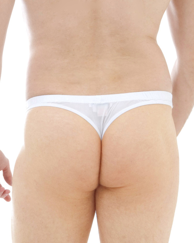 Set of 5 Silk Thong Briefs